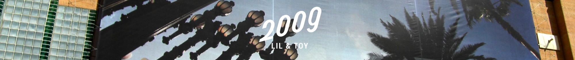 2009-lilntoy-slidi-01