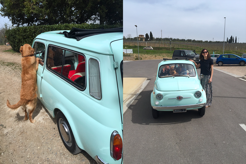 fiatgiardiniera-1968-lyford-02